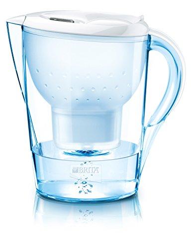 bester Wasserfilter