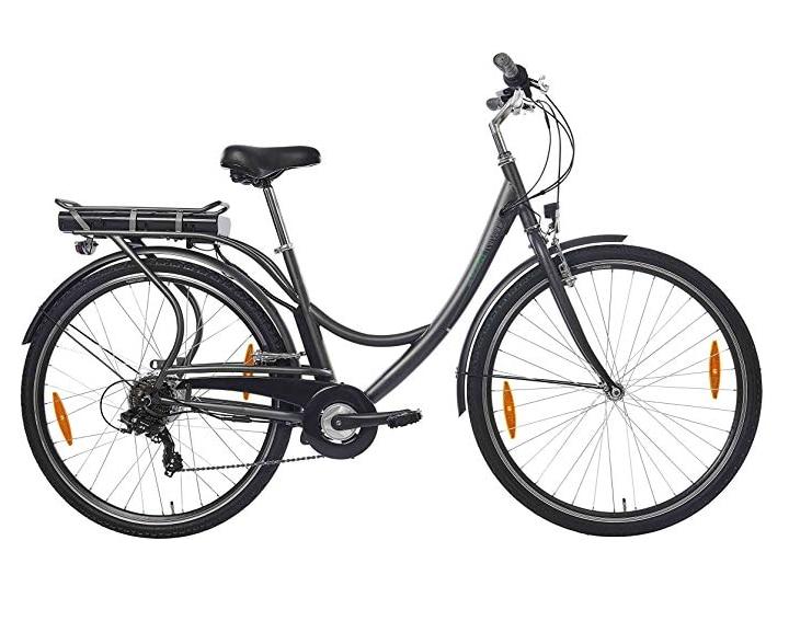 Teutoburg Senne E-Bike